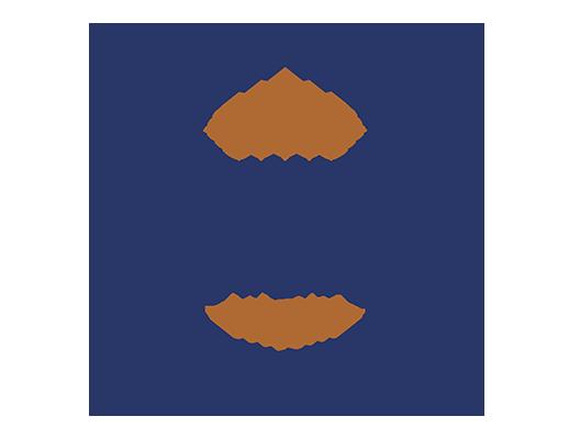Hudsonville Grille